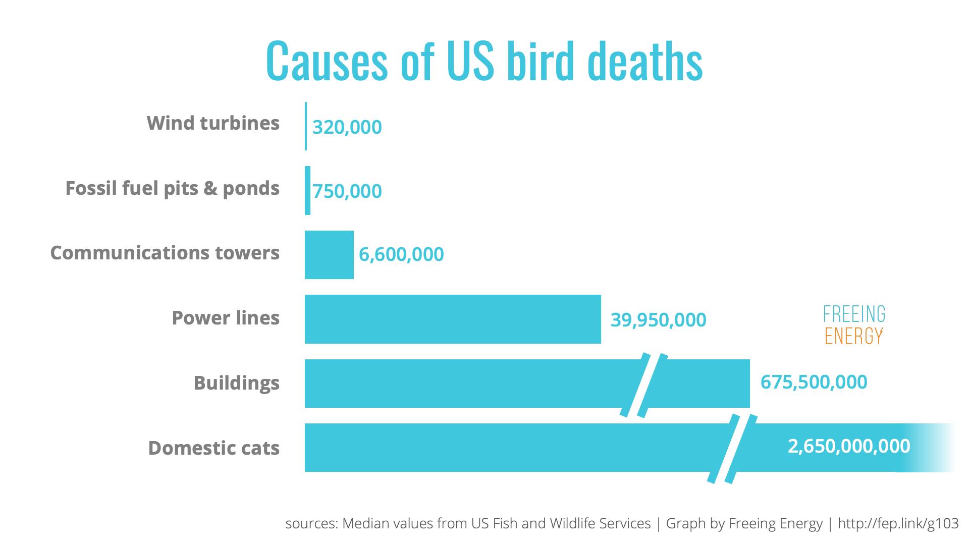 Cause of US Bird Deaths
